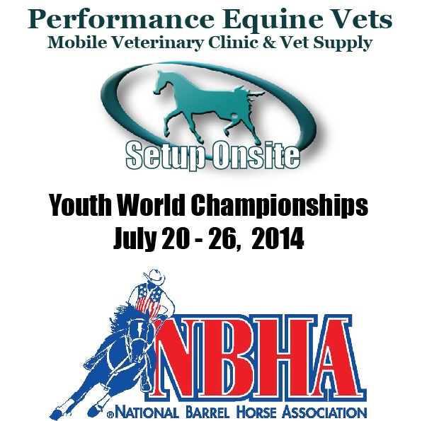 Heading to NBHA Youth World